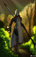 FFXIV Commission : Kudros Crendraven by Milee-Design