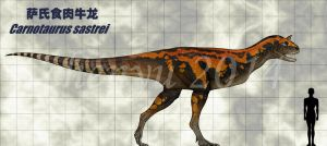 Carnotaurus sastrei by sinammonite