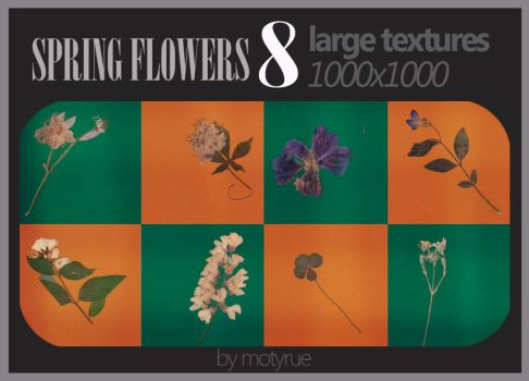Spring flowers 2 texture pack by Moty-rue