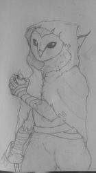 Owl Thief by The-Pyromanecer
