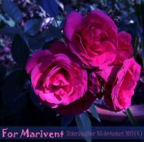 For Marivent by Sisterslaughter165