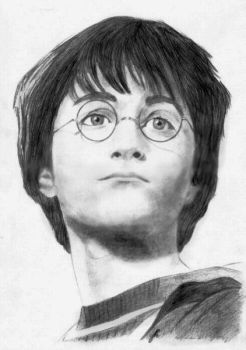 Harry Potter 2 by janep