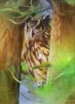 Owl 2 by kimberly80