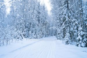 Winter road by Lubov2001