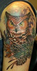 Owl in the moonlight by Phedre1985