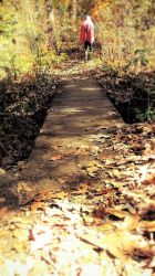 Choose Your Path by meljoy68