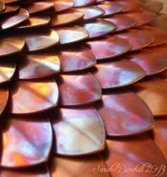Tinted copper scales by fairyfrog