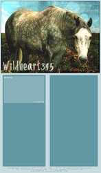 Wildheart II by hlpedin