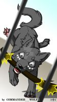 Pick up the stick! by COMMANDER--WOLFE