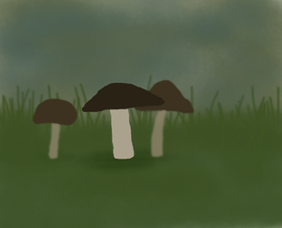 Mushrooms by SECRET-NINJA-SUPER-M