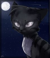 Moon Headshot +Commish+ by Bluefire-kitteh