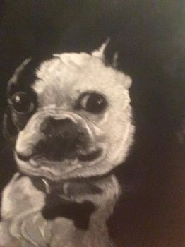 In memorory of a coworkers dog by jiesi
