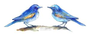 Watercolour vs Copic (Red-flanked Bluetails) by Carcaneloce