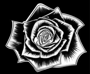A Black Rose by Dumpstaz