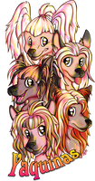 Commission Chinese Crested by Contugeo