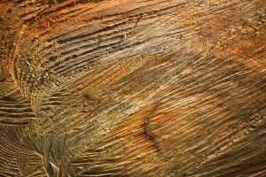 Wood Texture 18 by Limited-Vision-Stock
