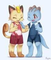 Meowth and Machop