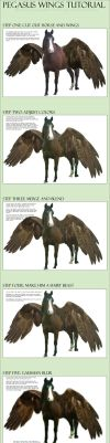 Pegasus Wings Tutorial by nikkigroner