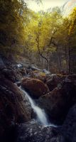 Small Fall by Cormocodran15