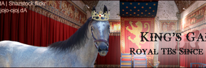 Stable Banner ~ King's Gambet by Liberty-Designs