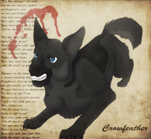 CE - Crowfeather by Leopard-Of-Shadows