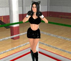 Request: Boxing Cat Girl by chuy9502