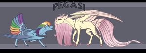 MLP AU: The Pegasi by Phoeberia