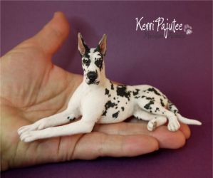 Miniature 1:12 Harlequin Great Dane sculpture by Pajutee