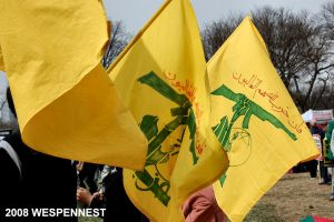 Hezbollah Idiots at Rally by Wespennest