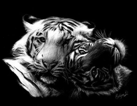 Realism :: Tigers on Clayboard by waterlilly