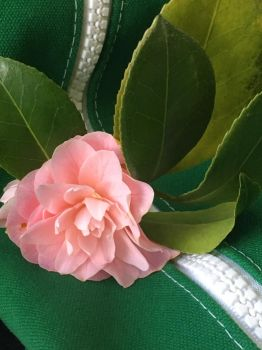 Camellia on Bus (3) by Clare-Prime-of-Ultra