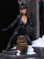 Catwoman  2 by rvbhal