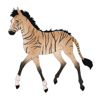 N2273 Padro Foal Design for MistMasquerade by casinuba