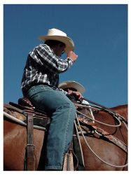 rodeo_festival_cowboy by wombatical