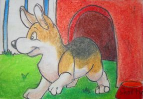 Corgi ACEO by TweedPawn
