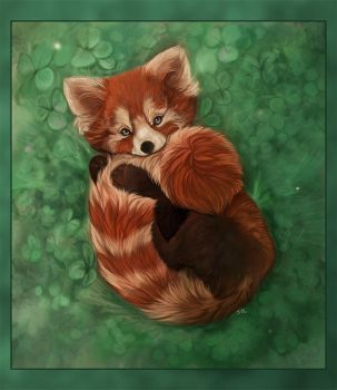 SOP entry-Red Panda by daisy7