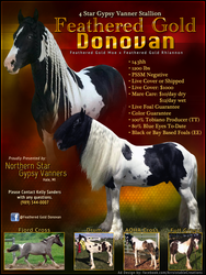 Feathered Gold Donovan by arrsistable