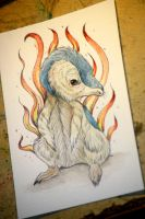 Cyndaquil Pokemon