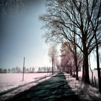 Country Road II Infrared by MichiLauke