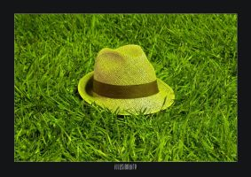hat on the grass by Illusion-Industries