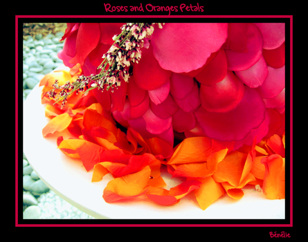 Roses and Oranges Petals by benelie