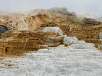 Mammoth Hot Springs by JWDesignCenter