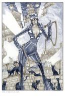 Catwoman by Walter-Ostlie