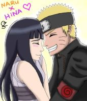 NaruHina One Year Anniversary by ichirukibiggestfan