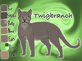 Twigbranch of ThunderClan - The Raging Storm by Jayie-The-Hufflepuff