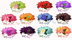 + Shaymin Variaties +