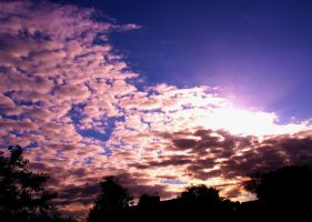 Suburban Sunset 5 by SquirrelGirl111
