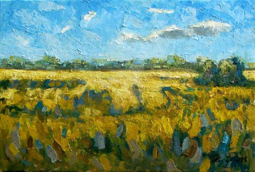 yellow fields with some clouds by bogdantzigan