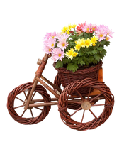 bicycle with flowers png by Melissa-tm