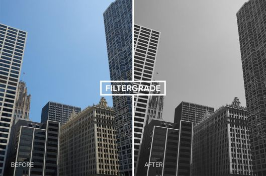 Free Black and White Capture One Styles by filtergrade